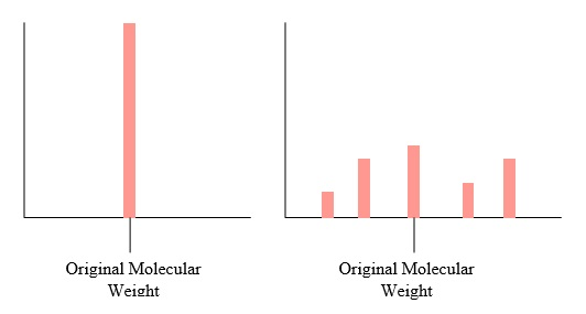 48 Molecular Weight Species