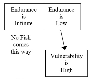 21 Fish Endurance Contradiction